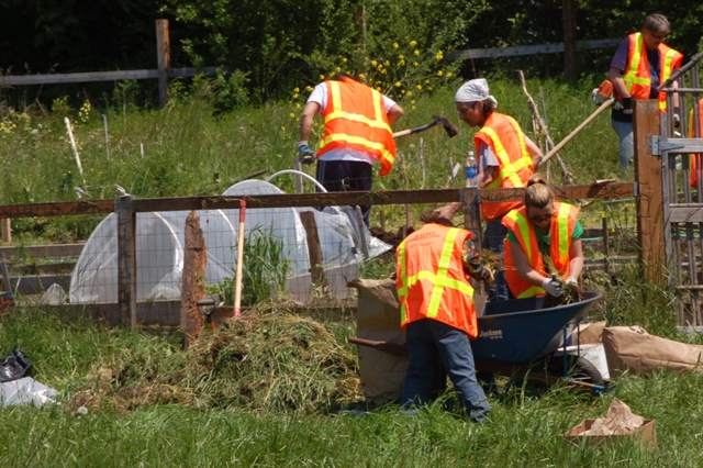 Community Court participants clean up New Holly P-Patch