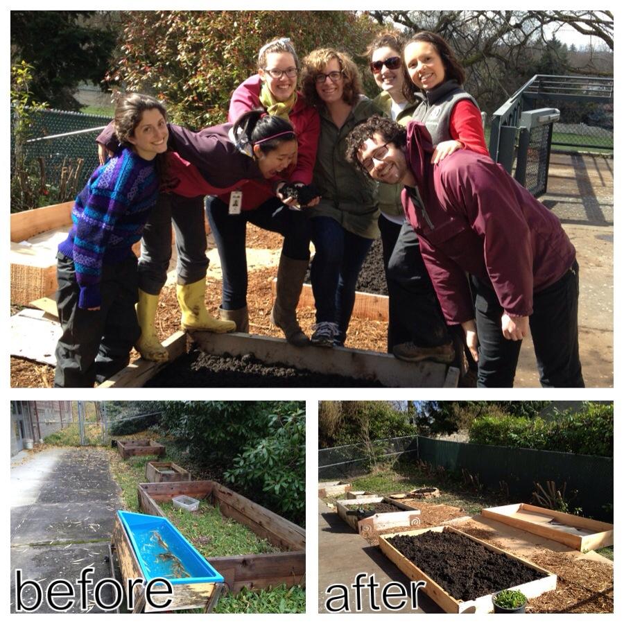 team Apple Corps Garden