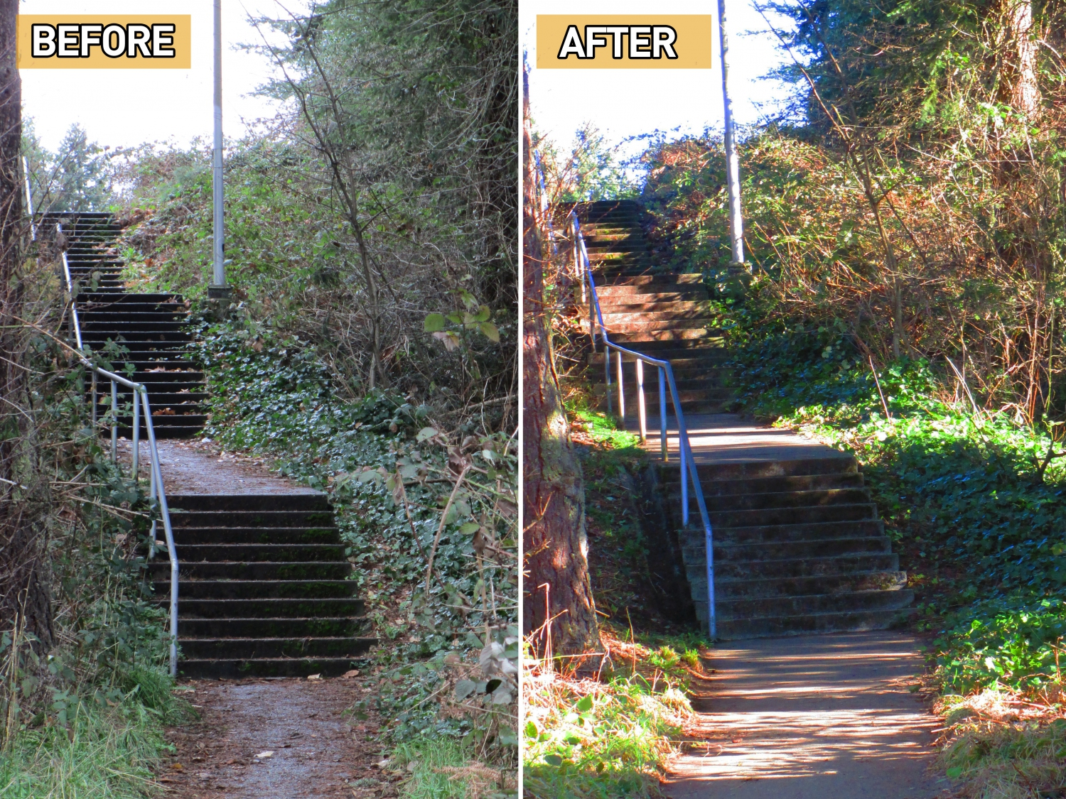 Before & after image of Walking School Bus stair route