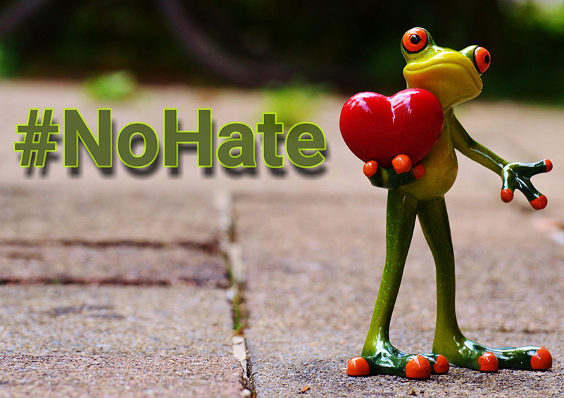 Frog holding heart #nohate