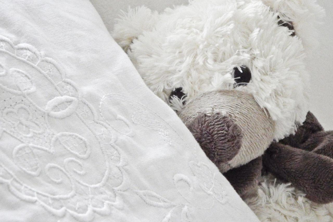 teddy-1724555_1280
