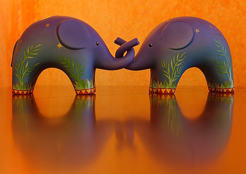 Two elephants, trunks entwined, orange background