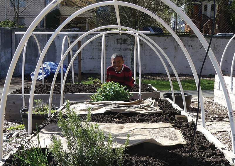 Jamari Tompkins peeks through the frame of a raised garden bed at Leschi Elementary school.
