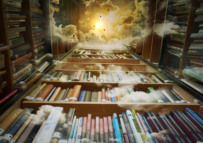 Library to the sky
