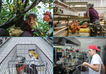 Collage of food worker photos: 1) man picking apples in a tree, 2) woman making sausages in a factory, 3) grocery cart filled with food, 4) man stirfrying food in a restaurant kitchen