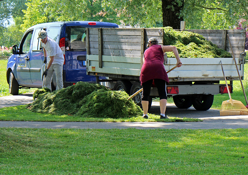 Two landscape gardeners rake a big pile of grass next to a blue van with a trailer on it.